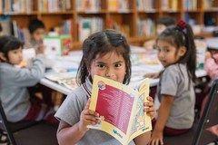 Mineduc lanza primera encuesta nacional de lectura