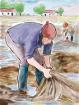 Bonificación para el cultivo y repoblamiento de algas