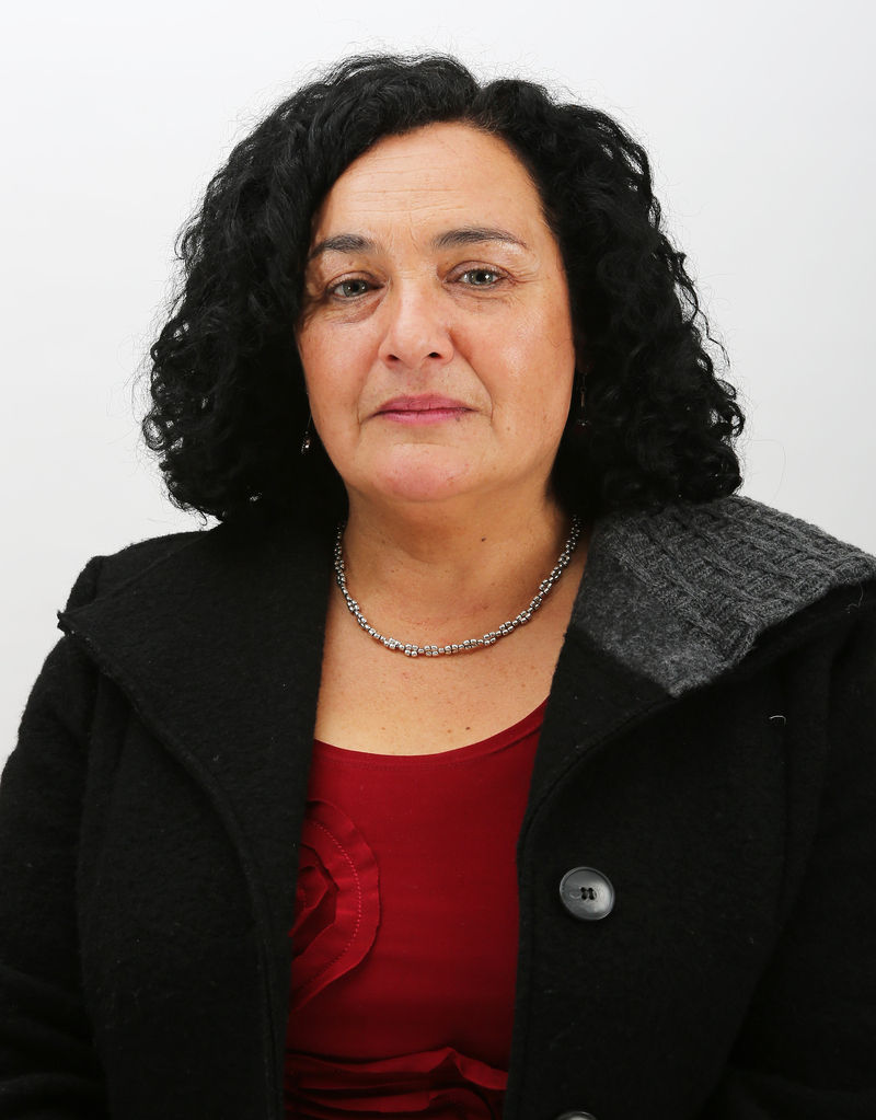 Diputada Clemira Pacheco valoró la forma como India protege a sus pasajeros aéreos