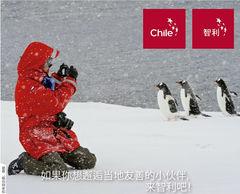 Las acciones de Turismo Chile en los mercados de Asia Pacífico para atraer nuevos visitantes