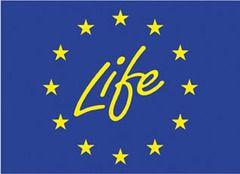 Programa LIFE+ cofinanciará 96 proyectos medioambientales en la Unión Europea