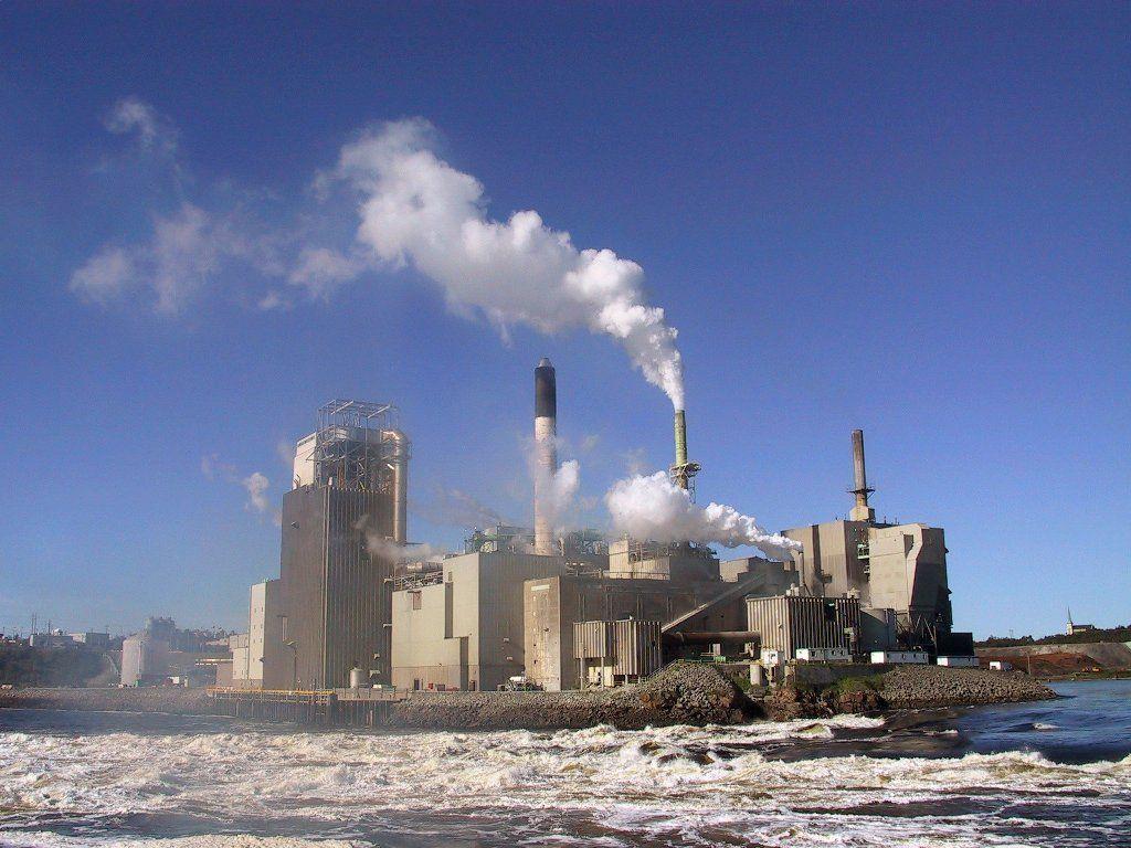 La Corte Medioambiental de Nueva Zelandia y su influencia en la formulación de políticas públicas