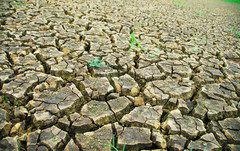 El agua como derecho: gobernanza para un acceso justo y equitativo