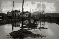 Políticas efectivas para un futuro resiliente: el caso exitoso de la ciudad de Nueva Orleans