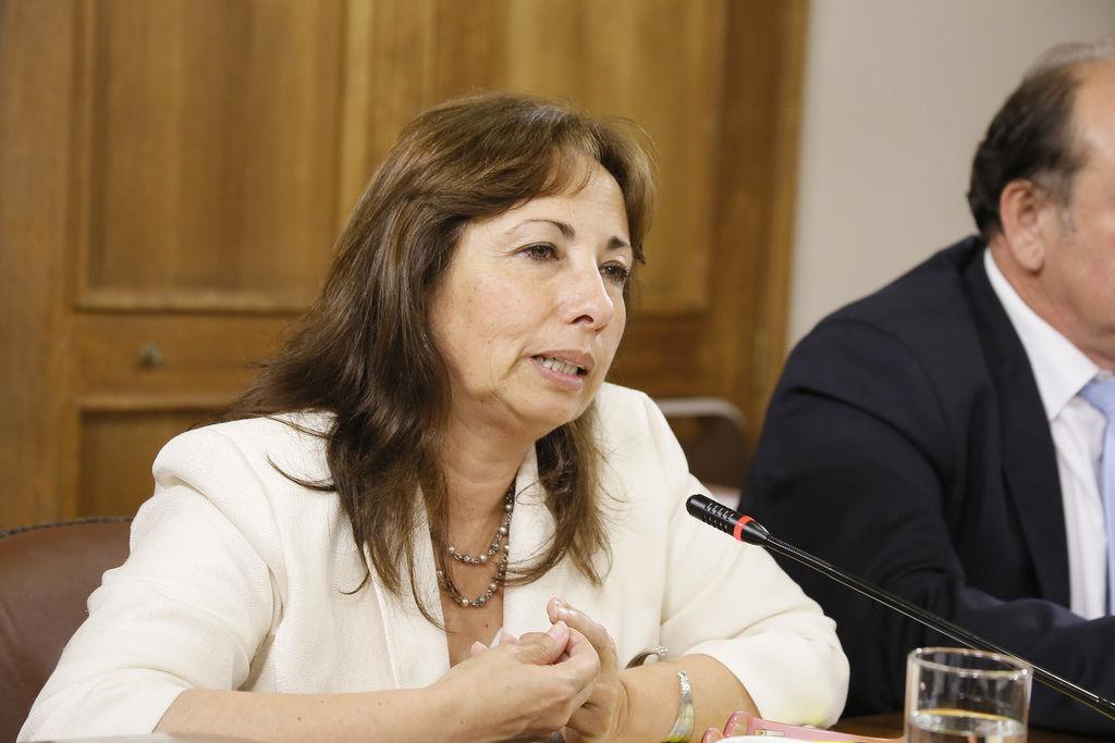 Diputada Alejandra Sepúlveda y una nueva institucionalidad para emergencias