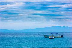 Protegiendo nuestros océanos: los desafíos de las zonas marinas protegidas