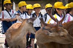 El sistema de protección de infancia en Japón que promueve la participación de familias