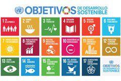 Los Objetivos de Desarrollo Sostenible desde la Bioética