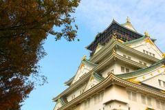 Beca Fundación Japón: convocatoria abierta para estudiantes destacados en el idioma