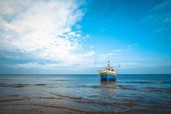 El avance de Nueva Zelandia hacia un modelo de pesca sostenible