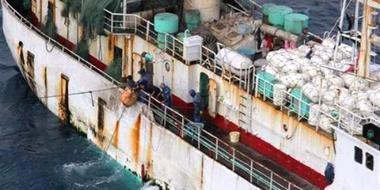 Responsabilidad ética en la pesca y acuicultura: un paso hacia la sostenibilidad de los recursos oceánicos