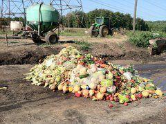El dilema ético del desperdicio de alimentos en un mundo con hambruna