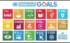 Medidas adoptadas por Japón para la implementación de la Agenda 2030