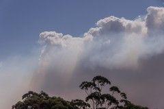 Las complejidades para superar los incendios que afectan a Australia