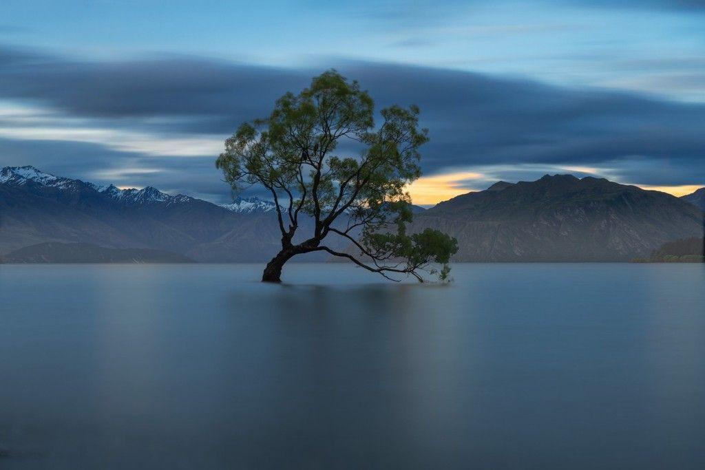 El marco de adaptación de Nueva Zelandia al cambio climático