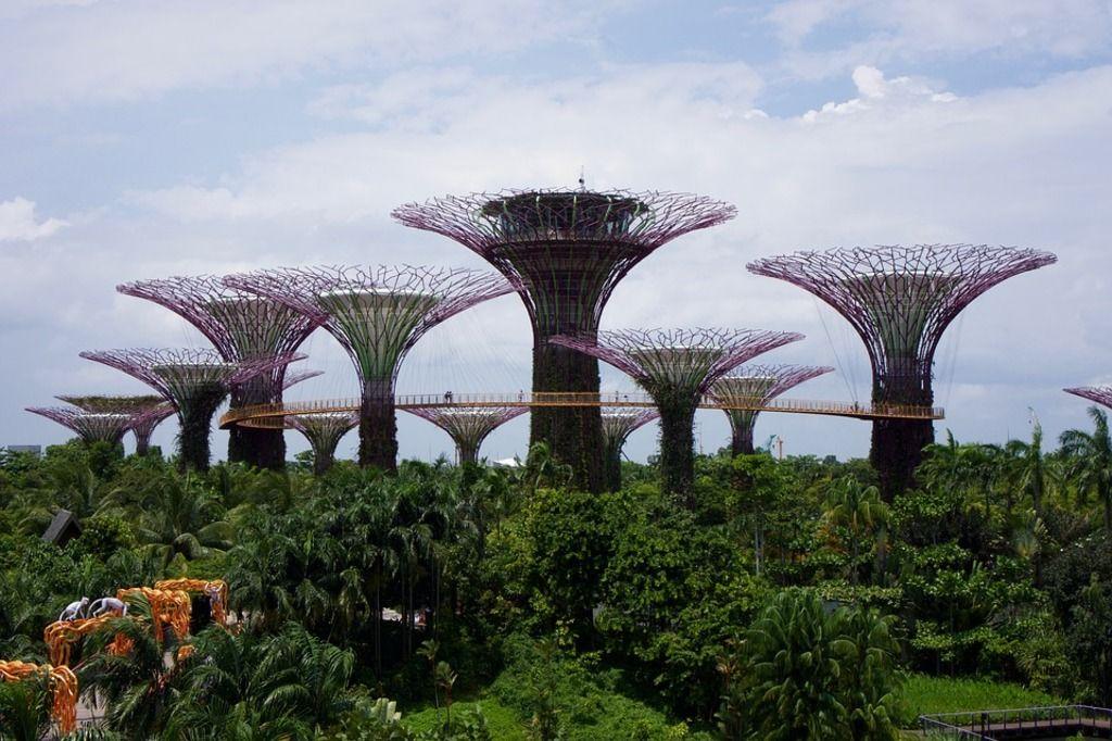 El Índice de Biodiversidad Urbana de Singapur y su aporte en la conservación de los ecosistemas urbanos