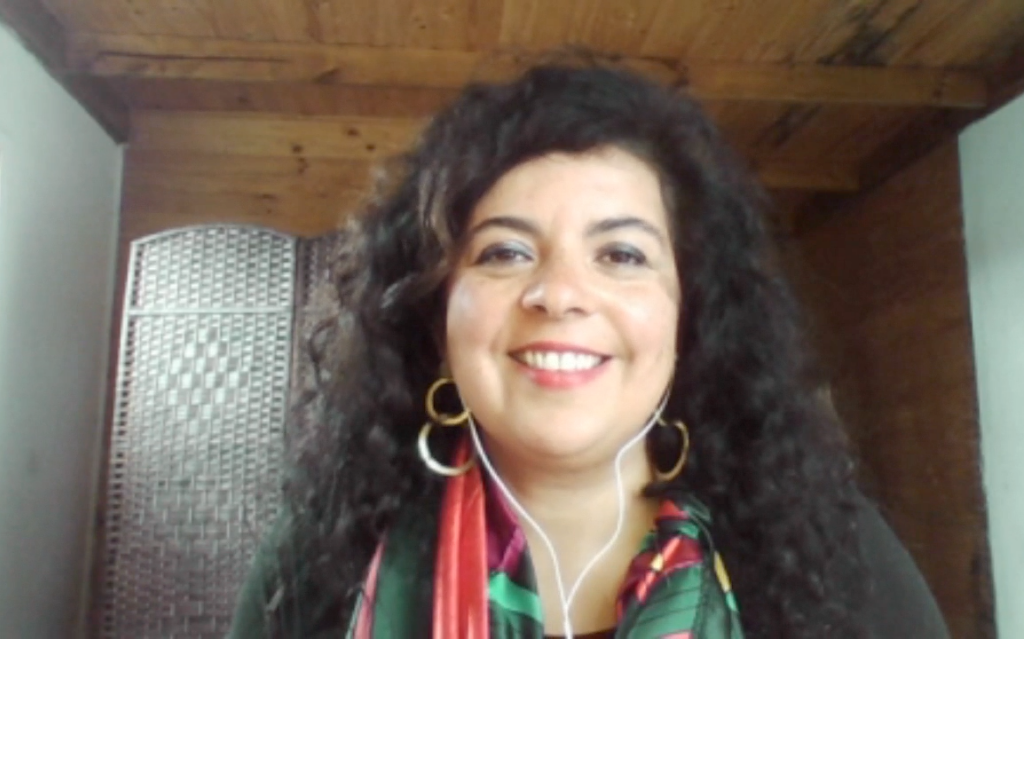 """Imagen de la nota Karina Piña: """"Los cursos que entregamos tienen una orientación chilena y latinoamericana"""""""