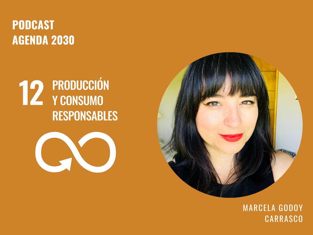 Agenda 2030 ODS 12: Marcela Godoy Carrasco analiza el camino de Chile a la producción y consumo sostenible